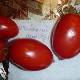 Семена томата Алтайский Шедевр
