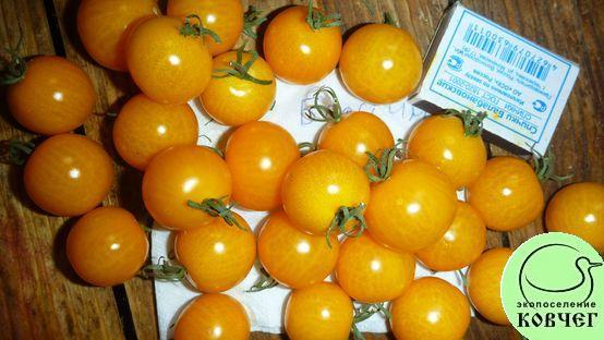Семена томата Барстин