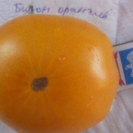 Семена томата Бизон Оранжевый