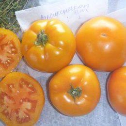 Семена томата Вапсипиникон Пич