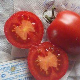 Семена томата Гибрид-4 Тарасенко