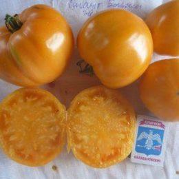 Семена томата Гигант Бельгии Жёлтый