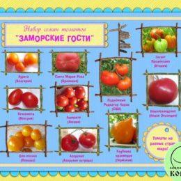 Набор семян томатов «ЗАМОРСКИЕ ГОСТИ»: томаты из разных стран мира