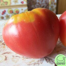 Семена томата Микадо