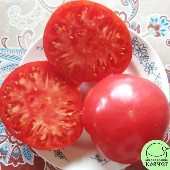 Семена томата Колхозная королева