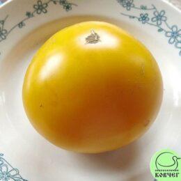 Семена томата Золото махараджи