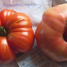 Семена томата Андреевский Сюрприз