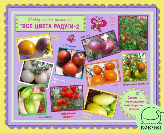 Набор семян томатов «ВСЕ ЦВЕТА РАДУГИ – 2»: средне- и мелкоплодные томаты различных окрасок