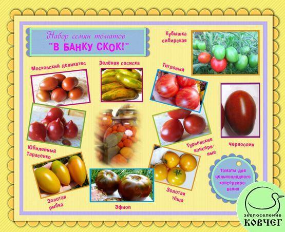 Набор семян томатов «В БАНКУ СКОК!»: томаты для цельноплодного консервирования