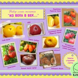 Набор семян томатов «ИЗ ВЕКА В ВЕК»: томаты старинных сортов со всего мира