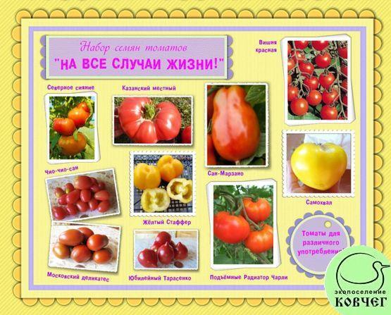 Набор семян томатов «НА ВСЕ СЛУЧАИ ЖИЗНИ»: томаты для различного употребления