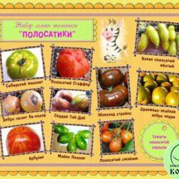 Набор семян томатов «ПОЛОСАТИКИ»: томаты полосатой окраски