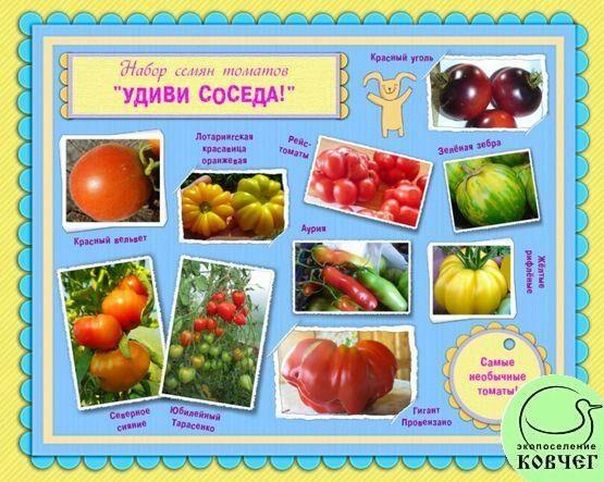 Набор семян томатов «УДИВИ СОСЕДА!»: самые необычные томаты