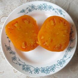 Семена томата Хурма (от Юли)
