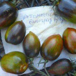 Семена томата Атомный Виноград Брэда