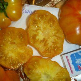 Семена томата Баньян Руми