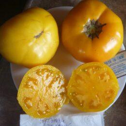 Семена томата Брэнди Золотой