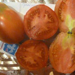Семена томата Гранёные