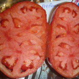 Семена томата Гребешки
