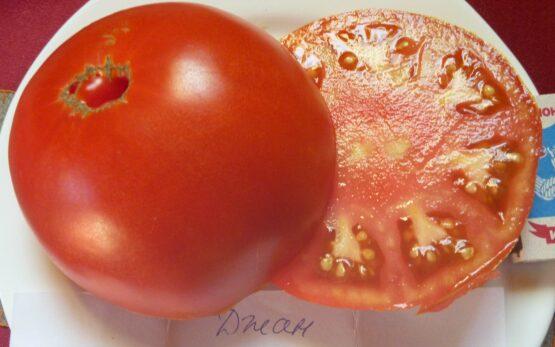 Семена томата Джан