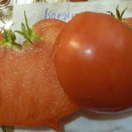 Семена томата Кардио