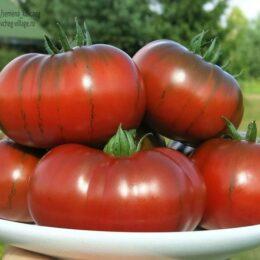 Семена томата Кумато крупноплодный