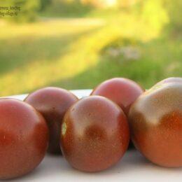 Семена томата Чёрные черри