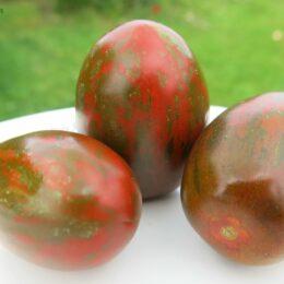 Семена томата Чёрный мавр полосатый