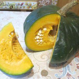 Семена тыквы Марина из Киоджа