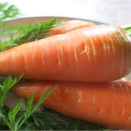 Семена моркови Красный великан (Роте ризен)