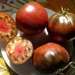 Семена томата Бычье Сердце чёрное
