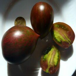 Семена томата Жемчужины Мудрости