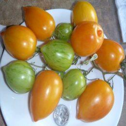 Семена томата Жёлтый Вкус
