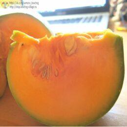 Семена тыквы  Новозеландская долгохранящаяся
