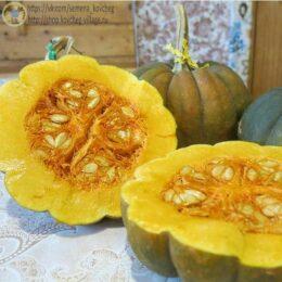 Семена тыквы  Футсу Курокава