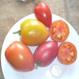 Семена томата Японское Сердечко