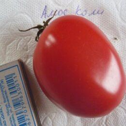 Семена томата Амос коли