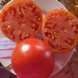 Семена томата Бычье Сердце Дедушкино