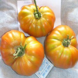 Семена томата Мятные красные