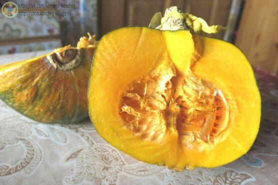 Семена тыквы Дакотский десерт дяди Дэвиса